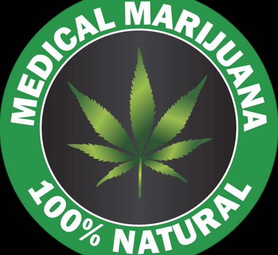 Ile kosztuje marihuana lecznicza?